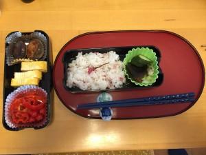 Sakura obento box