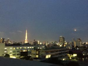 Evening view of Tokyo Tower and full moon.