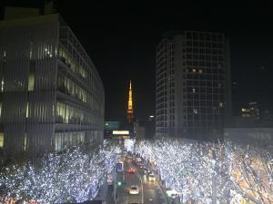 Holiday lights up with Tokyo Tower in the background. You won't find any trash OR trash cans on this street!