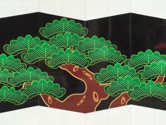 Japanese cyprus trees