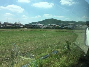 Ashikaga is a rural town with rice fields and other crops extending for miles between factories and buildings.